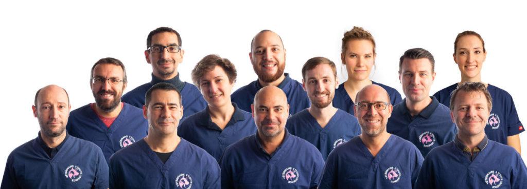urgence vétérinaire : l'équipe